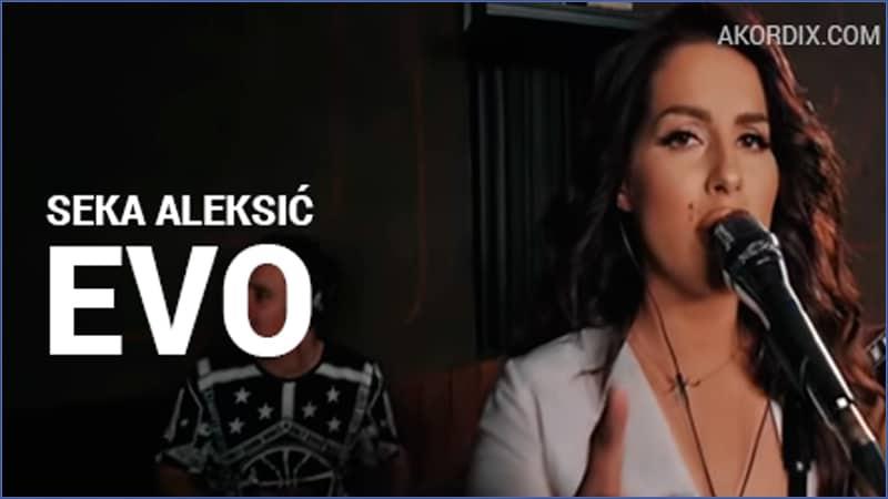 SEKA ALEKSIC – EVO