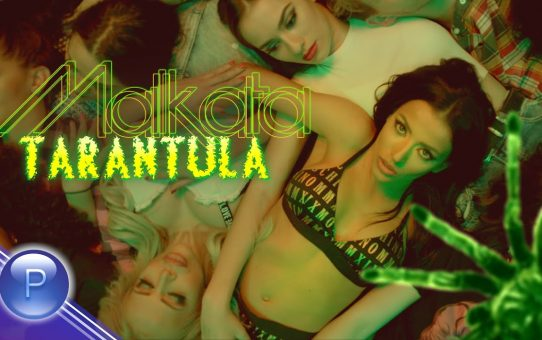 MALKATA - TARANTULA / Малката - Тарантула