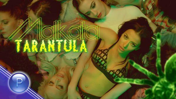 MALKATA-TARANTULA-2020